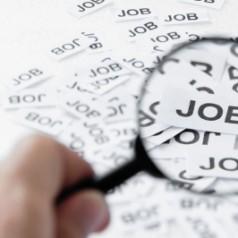 Effective Job Search Techniques